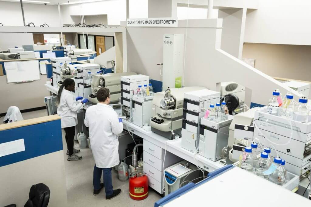 staff in laboratory testing thc and cbd levels in cannabis and hemp samples