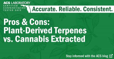 Terpene debate: cannabis vs non cannabis plant-based terpenes